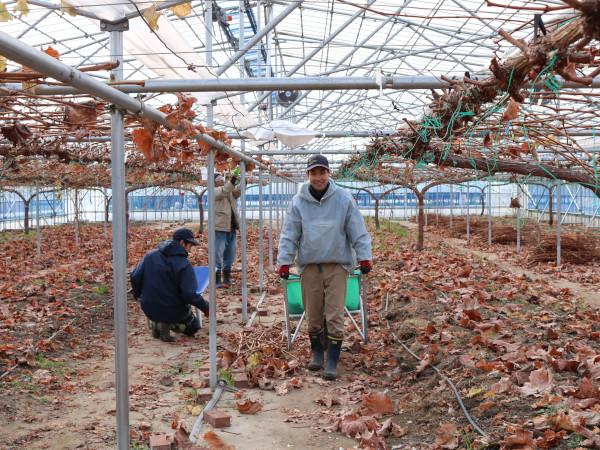 人手不足の農家と障害者をつなぐ仕組みとは~地域とつながるノウフク#4~