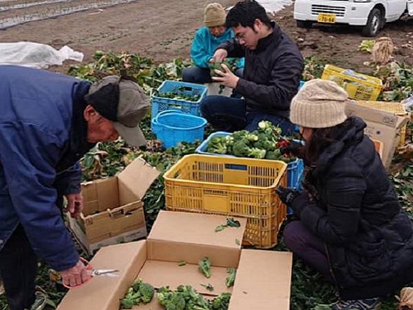 地元農家の協力で食材自給 寄付だけに頼らない子ども食堂へ【農業と子ども食堂#1】