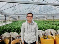 異業種から水耕栽培で新規就農 低予算でシステム導入のコツとは