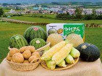 北海道三大メロン生産地の一つ、共和町で『地域おこし協力隊』になりませんか(今期募集は定員のため終了)