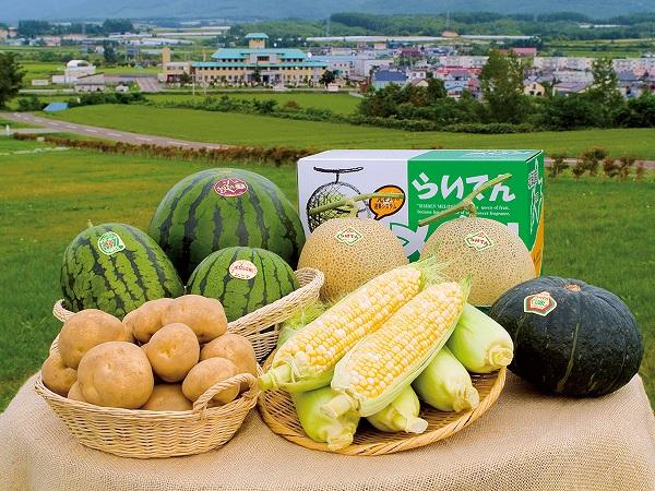 北海道三大メロン生産地の一つ、共和町で『地域おこし協力隊』になりませんか