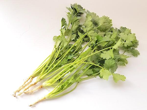 一番稼げる葉物野菜!? パクチーを栽培して上手に売ろう!
