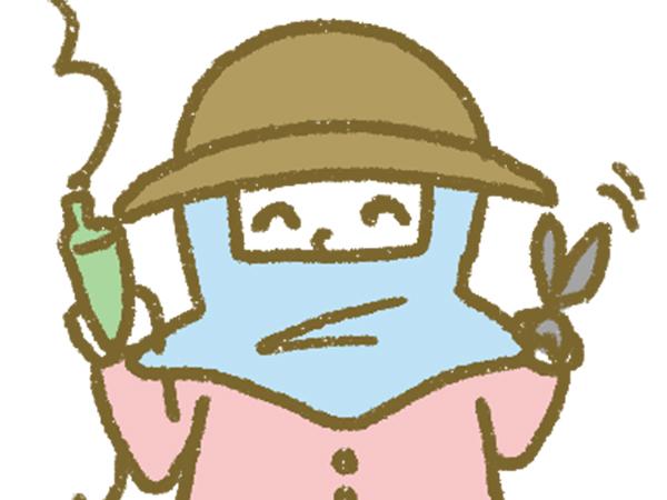 漫画「宮崎に移住した農家の嫁日記」【第61話】作物と農家の相性