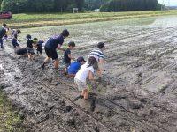 【田植え体験情報2019福島・群馬編】プラスアルファの楽しみがある農園5選