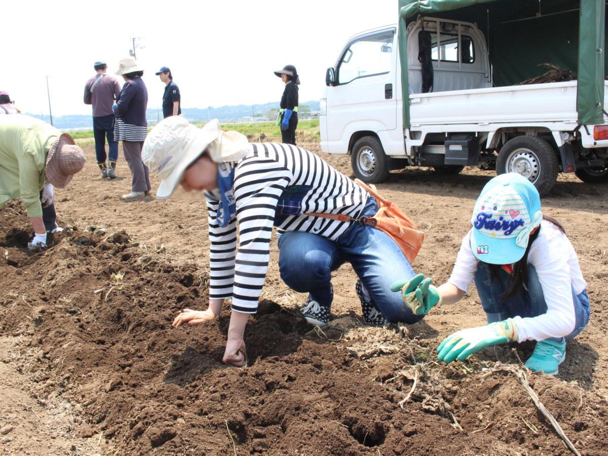 【参加者募集】ロアッソ熊本が「農業×スポーツ」のコラボイベントを初開催