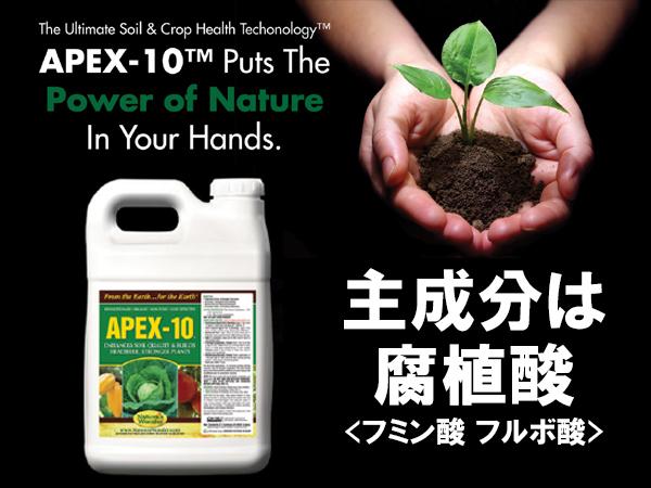 農家を儲けさせたい! 天然液体腐植酸『APEX-10』で変えるこれからの農業 -有限会社Gyolighthouseー