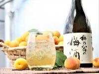 「令和」を祝うお酒は梅酒! 梅乃宿酒造の梅酒造りへのこだわりに迫る