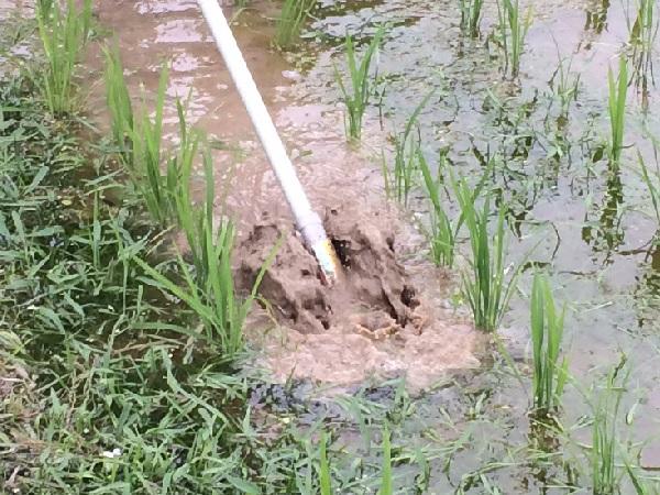 「草刈革命」を起こす刈払機アタッチメントを導入し水田・畑の除草作業効率が向上