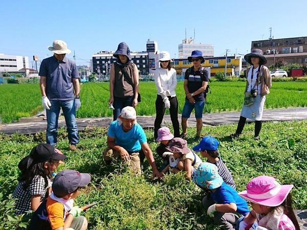 野菜を食べない都会人、都市農業は生き残れるのか?【進化する都市農業 #10】