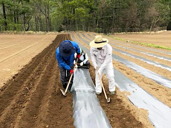 【まるごと新規就農】お給料もらいながら研修も ナチュラルラボラトリー・高柳雄哉さんの場合