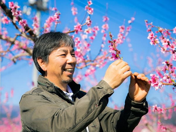 """自分の色を付ければ、農業はもっと面白い """"桃の宝石""""を磨き上げる匠のメッセージ"""