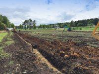 目に見えない排水がもたらす農耕地への変化。暗渠(あんきょ)排水で、農業を陰から支える