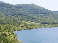 【南富良野町森林組合】環境に配慮しつつ、森林資源を最大限活用する取組とは