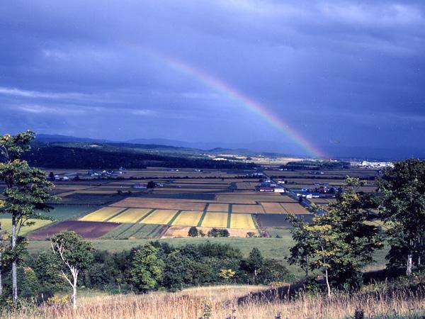 週末レジャーは札幌で。都市に隣接する田舎でかなえる「都会」「田舎」のいいとこどり生活