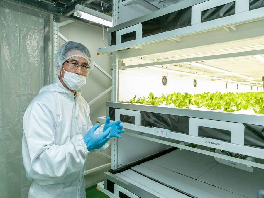 """国内工場は黒字化に成功。""""高品質・低価格""""の安定供給を可能とする植物工場とは"""