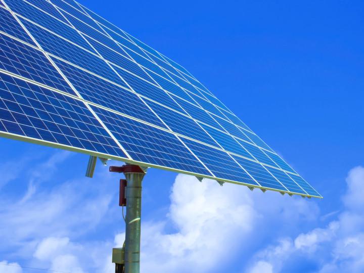 ソーラーシェアリングとは? 導入費用や適した作物は