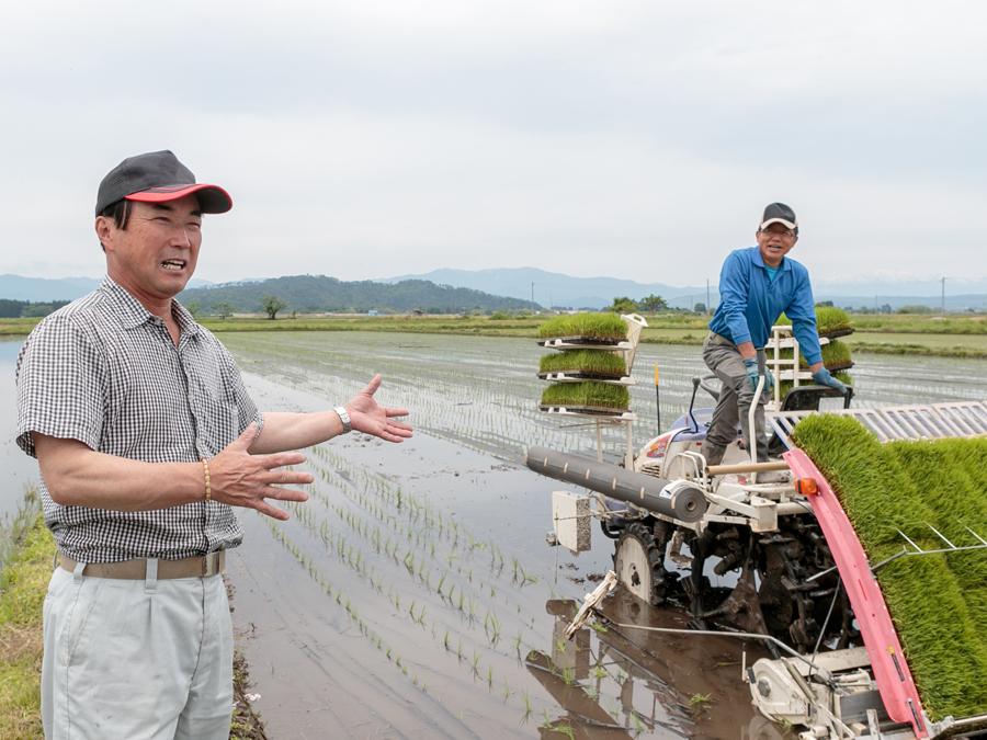 """有機米こそ、味! """"選ばれる農業""""を実践する上和田有機米生産組合の田植えに密着"""