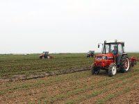 福島県の田園地帯・相馬市の若手農業者、独自の営農スタイルで奮闘中