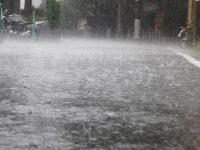 令和元年夏の気温と降水量 2週間気温予報で早めの備えを