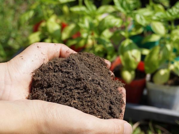 超好熱細菌が起こす土の革命【畑は小さな大自然・番外編】