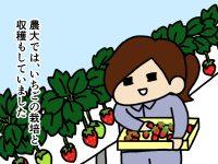 漫画「跡取りまごの百姓日記」【第21話】農業という仕事