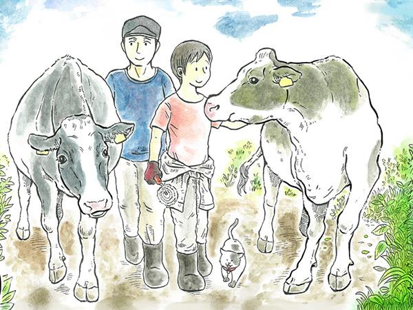 酪農のお仕事最前線