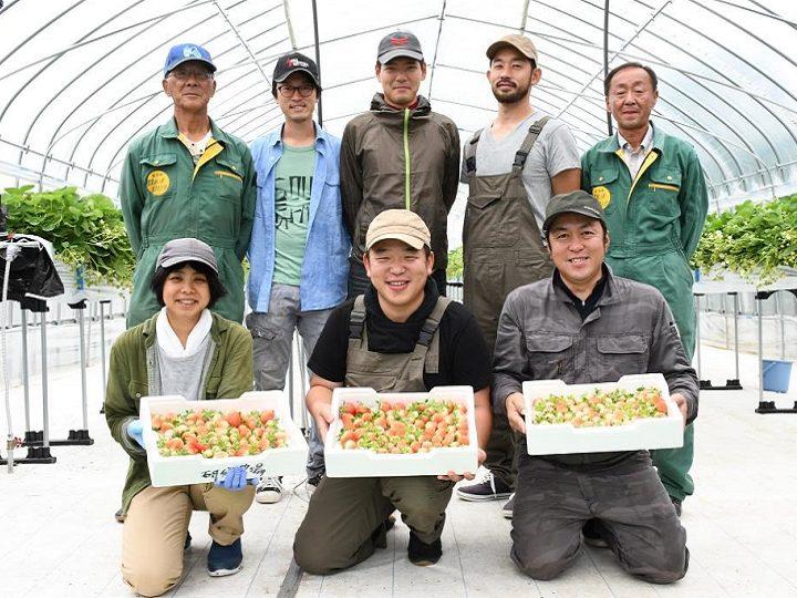 【厚真町】『地域おこし協力隊』となって、あなたの「やりたい農業」をしませんか?