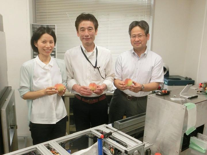 果物輸出を後押しできるか?! モモシンクイガの検出システムを開発