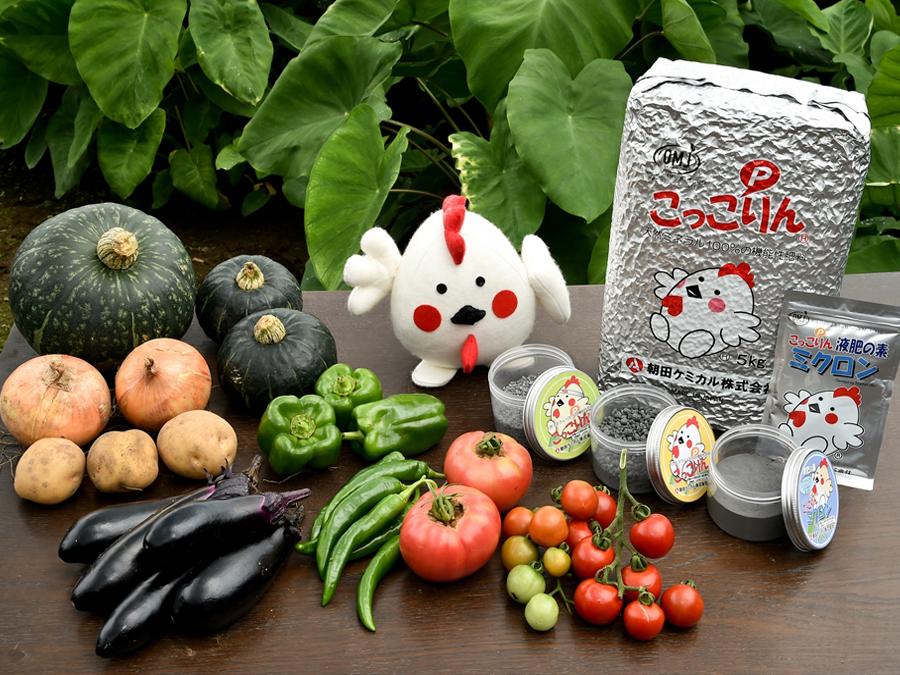 野菜栽培の研究歴65年! 優秀品種へ送られる賞を数多く受賞した研究者が注目する『こっこりん®』。その使用方法や効果とは。