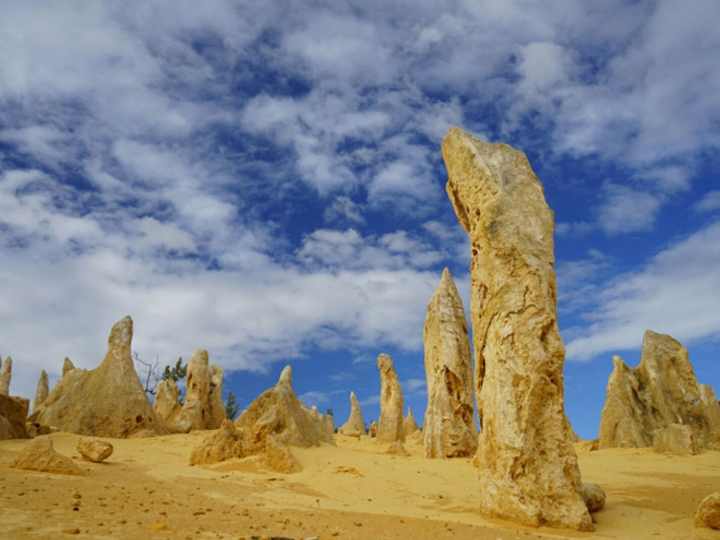 The Pinnacles limestone formations in Perth's Nambung National Park are made of shells