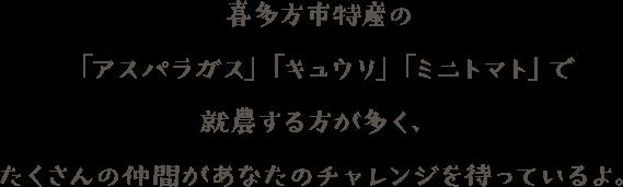 喜多方市特産の「アスパラガス」「キュウリ」「ミニトマト」で就農する方が多く、たくさんの仲間があなたのチャレンジを待っているよ。