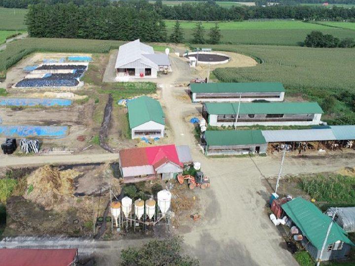 【新得町】家族経営から法人化。経営規模拡大を図る『齊藤牧場』で、自分らしく働こう