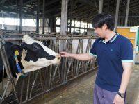 【北海道湧別町】未経験者も活躍! 地域の酪農の未来を支える担い手として、働きませんか
