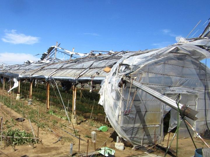 【令和元年台風15号被害】緊急支援募金サイト開設、ふるさと納税利用でさとふるが