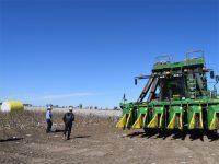 圧倒的スケールの農業大国オーストラリアで、最先端農業に触れてきた【Vol.3】