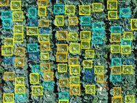 ドローン画像を「価値ある情報」に変える圃場管理サービス『いろは』とは?