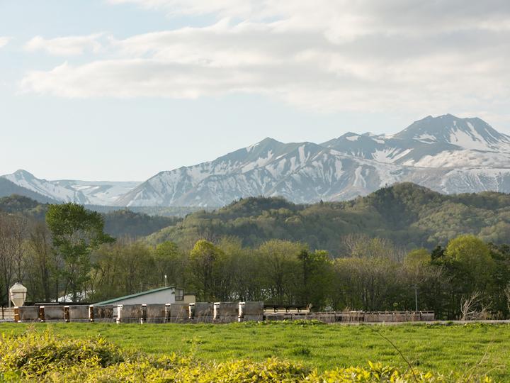 十勝/新得 「神々の庭」で営む牛飼いは、家族との時間が残るぜいたくな暮らしでした