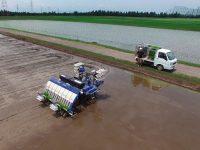 水稲作のスマート化を実現へ 自動運転田植機のすごい実力とは?