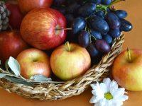 果物ガイド