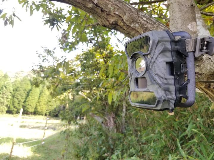 夜の鳥獣から畑を見守る 話題のトレイルカメラを使ってみた