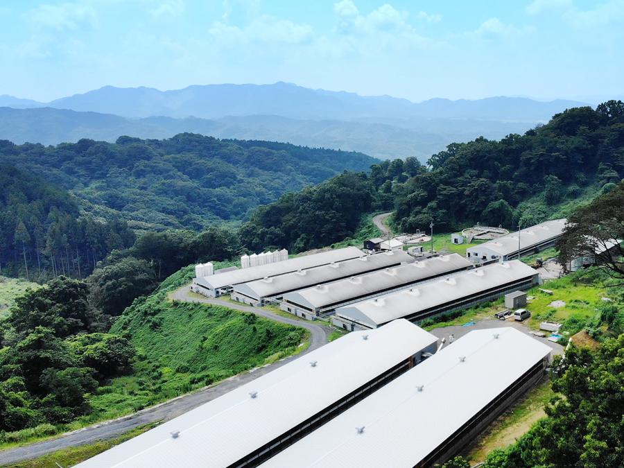 NTTテクノクロス株式会社