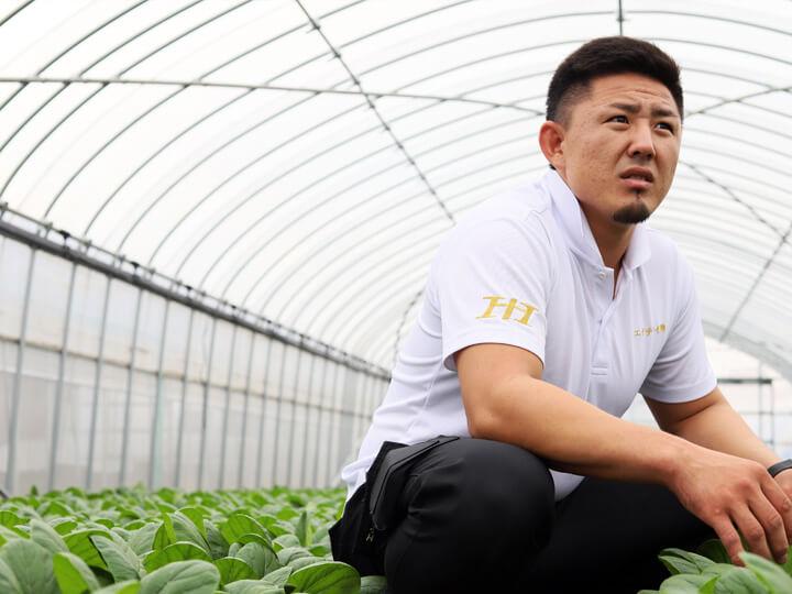 75棟のハウスでコマツナ・ミズナ栽培 多角経営を超スピード展開する20代若手農業者【農家が選ぶ面白い農家Vol.6】