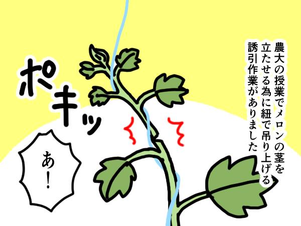 漫画「跡取りまごの百姓日記」【第28話】植物の生命力