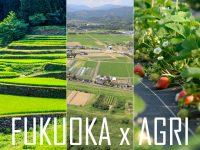 """「農業県」ふくおかで就農しませんか? """"福岡の農業""""の魅力を見学できる講座とツアーを実施中です!"""