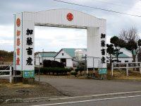 【北海道むかわ町】あなたの夢を後押しします! 人と自然が輝くむかわ町の育成牧場で働こう