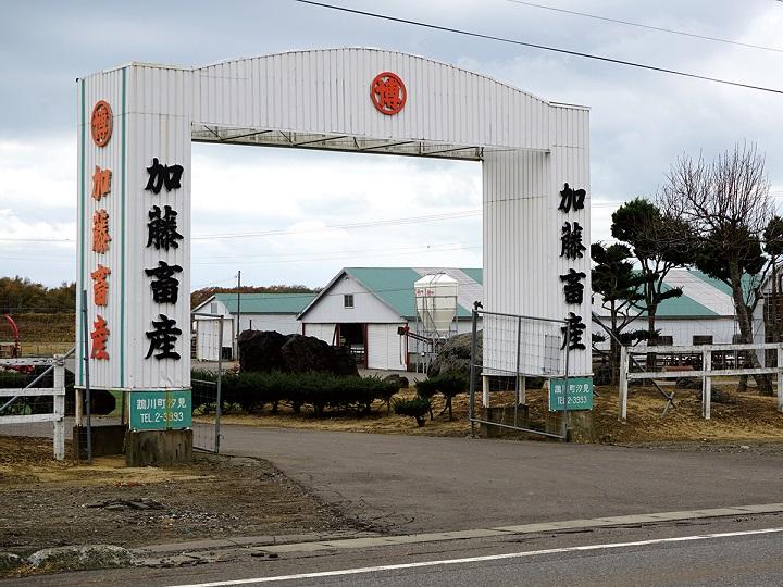 【北海道むかわ町】あなたの夢を後押しします! 人と自然が輝くむかわ町の育成牧場