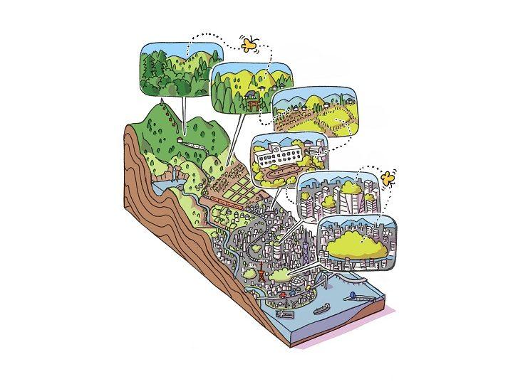 生態系を創る「協生農法」とは?ソニーCSLが六本木ヒルズで実証実験