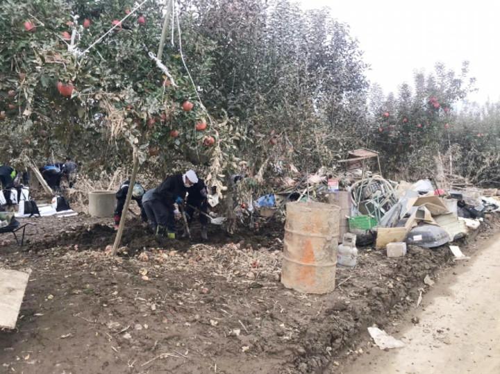 台風19号被害から復興へ 長野県で農業ボランティア募集
