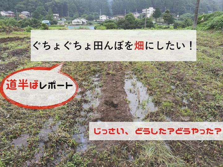 田んぼを畑にしよう!