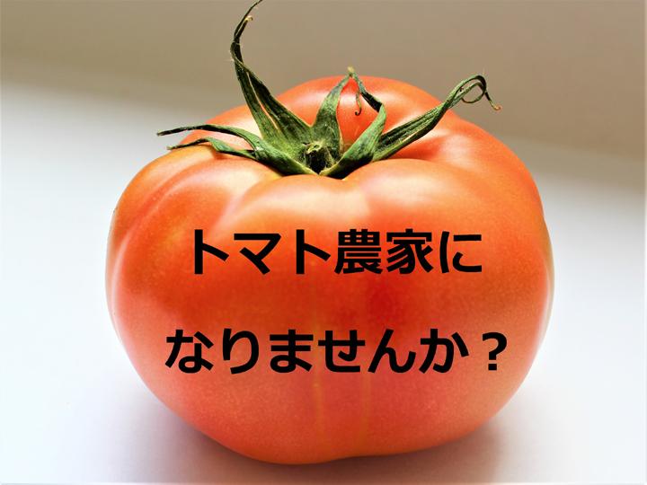 新規就農者へつなぐ 歴史あるトマト産地のバトン ― 岡山県『びほく農業協同組合トマト部会』の熱意!